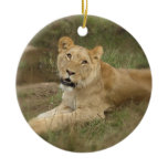 Lioness Ornament